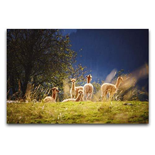 HirrWill Lienzo de pared, campo, pasto, ovejas, pinturas decorativas modernas, obras de arte de madera, marco de galería envuelto listo para colgar, 20 x 28 pulgadas