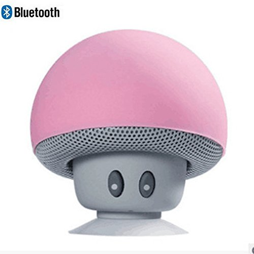 Leacoco Mini Wireless Portable Bluetooth Speakers with Mic and Sucker Portable Small Stereo for iPhone and Android System Equipment Etc. (Pink)
