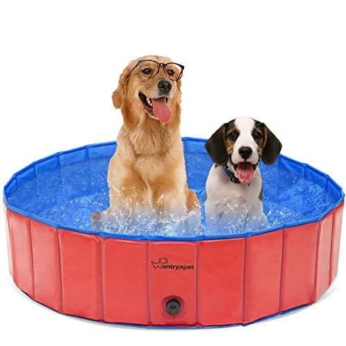 Piscina pieghevole per cani da compagnia, piscina da giardino all'aperto portatile, vasca da bagno per cuccioli, vasca da bagno per animali domestici Piscina per bambini per cani