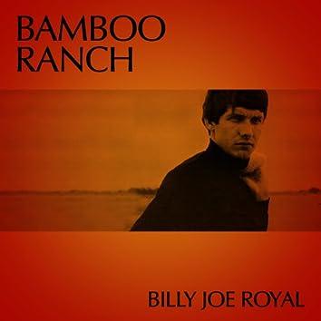 Bamboo Ranch