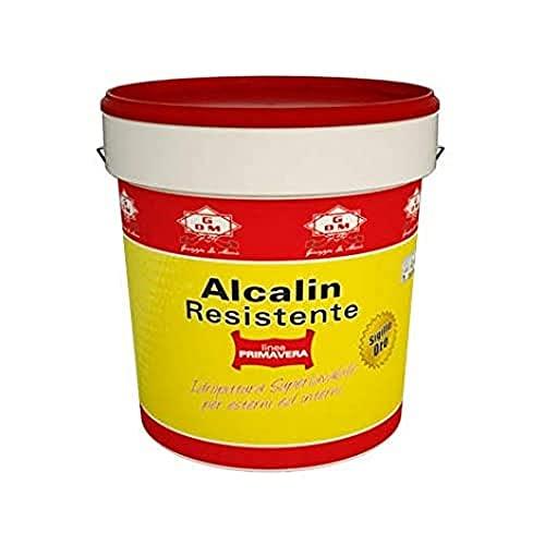 GDM-ALCALIN RESISTENTE, IDROPITTURA SUPERLAVABILE IDROREPELLENTE SUPERCOPRENTE (BIANCO GHIACCIO, 0,500 litri)