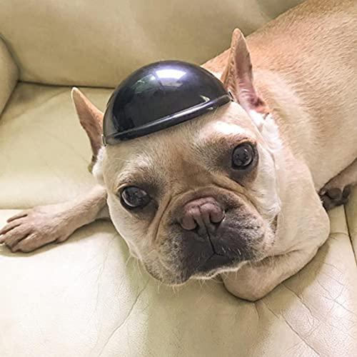 dewdropy - Casco de moto para mascotas, apto para gatos, perros pequeños, medianos y otros animales domésticos