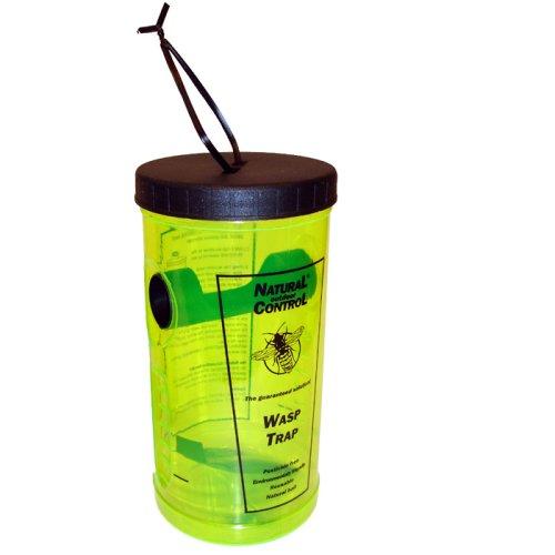 Swissinno Set 2x Insektenfalle Wespenfalle mit Lockstoff, Lockmittel zum Aufhängen, Hinstellen für Garten Terrasse Gelb