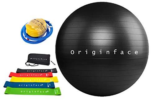 ORIGINFACE Juego de pelotas de fitness de 55 cm con juego de 5 bandas elásticas portátil con funda para pilates, ejercicios, equilibrio y tonificación en casa y gimnasio, yoga, con bomba rápida