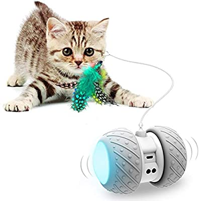 Interactive Robotic Cat Toys,Automatic Irregular USB Charging 360 Degree Self Rotating Ball,Automatic Feathers/Birds/Mouse Toys for Cats/Kitten,Build-in Spinning Led Light?Large Capacity Battery