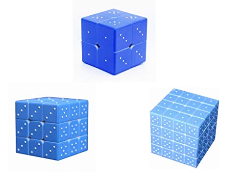 Braille Magic Cube Puzzle Toy Set 2X2 3X3 4X4 for The Blinds Person or Partially Sighted Color Weakness Speed Cube,Easy Turning and Smooth Play Toys for Kids Adults 3PACK