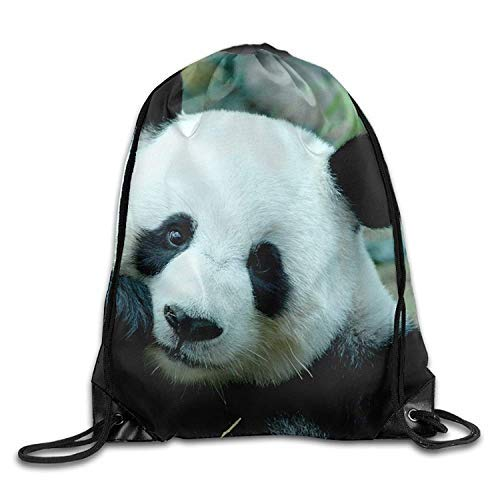 Etryrt Zaino con Coulisse,Borsa Palestra,Sacca Sportiva, Lovely Panda3D Print Drawstring Backpack Rucksack Small Shoulder Bags Gym BagPrint Drawstring Backpack