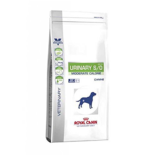 ROYAL CANIN Urinary S/O Moderate Calorie - Hund - Veterinary Diet - Diätfutter bei Harnsteinen 12kg