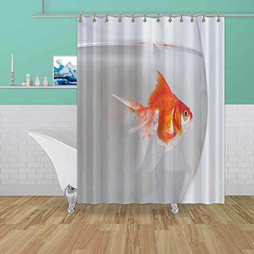 ALUONI Gold Fish in Aquarium France,Waterproof Polyester Fabric Shower Curtain with Hooks Bowl for Bathroom Decor 70''W x 72''H