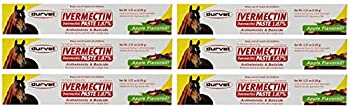 Durvet 6 Pack of Ivermectin Paste 0.21 Ounces each Apple Flavored Horse Wormer