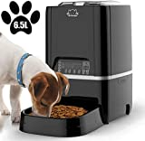 Auto Dog Feeders Review and Comparison