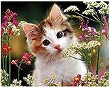 5D diy Nuevo Diamante gato encantador Diamante Pintura Bordado Punto de Cruz Rhinestone Mosaico Pintura para REGALO Diamante redondo 40x50cm