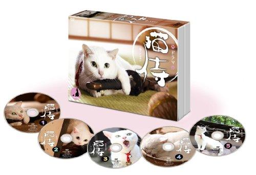 Japanese TV Series - Neko Zamurai (TV Drama) DVD Box (5DVDS) [Japan DVD] ZMSH-9103