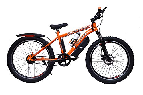 what is the best electric bike for the money