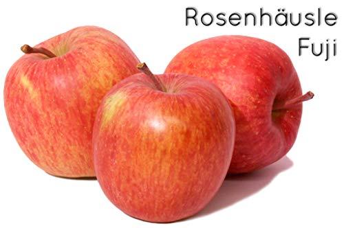 Fuji - Bodensee-Apfel vom Rosenhäusle
