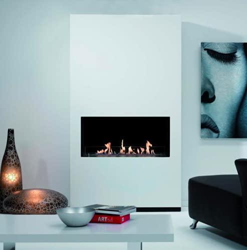 chimeneas encastradas fabricante Vass Design Eco-Fireplaces