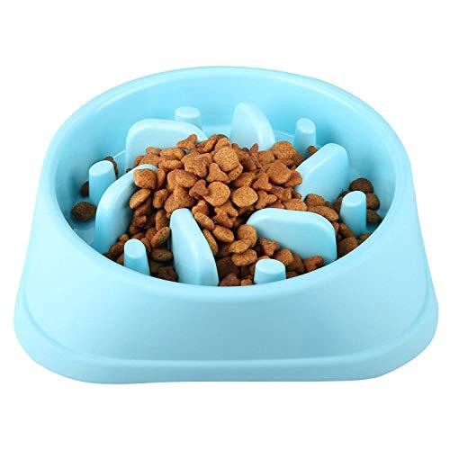CAM2 Dog Bowl Slow Feeder for Slow Down Eating Training, Anti-Choking Dog Cat Food Bowl, Non-Toxic Eco-Friendly Pet Slow Feed Bowl, Blue