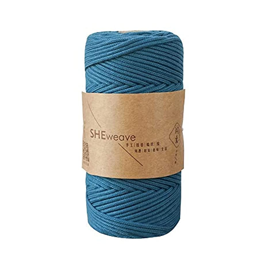 Macrame Cord,Macrame Rope,Jewelry Cord,Colorful Craft Cord for Macrame Supplies,Macrame Bag,Wall Hanging (Steelblue, 3mm x 100m(About 109 yd))