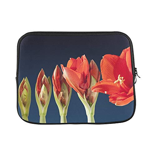 Design Custom Grow Blossom Time Lapse Sequence Amaryllis Flower Sleeve Soft Laptop Case Bag Pouch Skin for MacBook Air 11'(2 Sides)