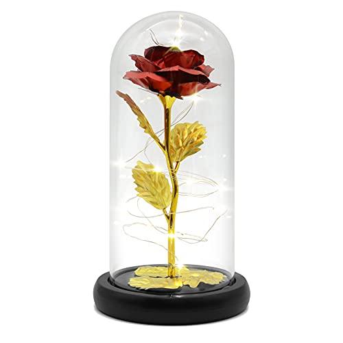Die Schöne Und das Biest Rose in Glaskuppel mit LED-Lichter, Eternal Enchanted Forever Rose Auf Holzsockel, Romantisches Geschenk für Frauen Valentinstag, Mutter, Jahrestag Geburtstag Hochzeitstag