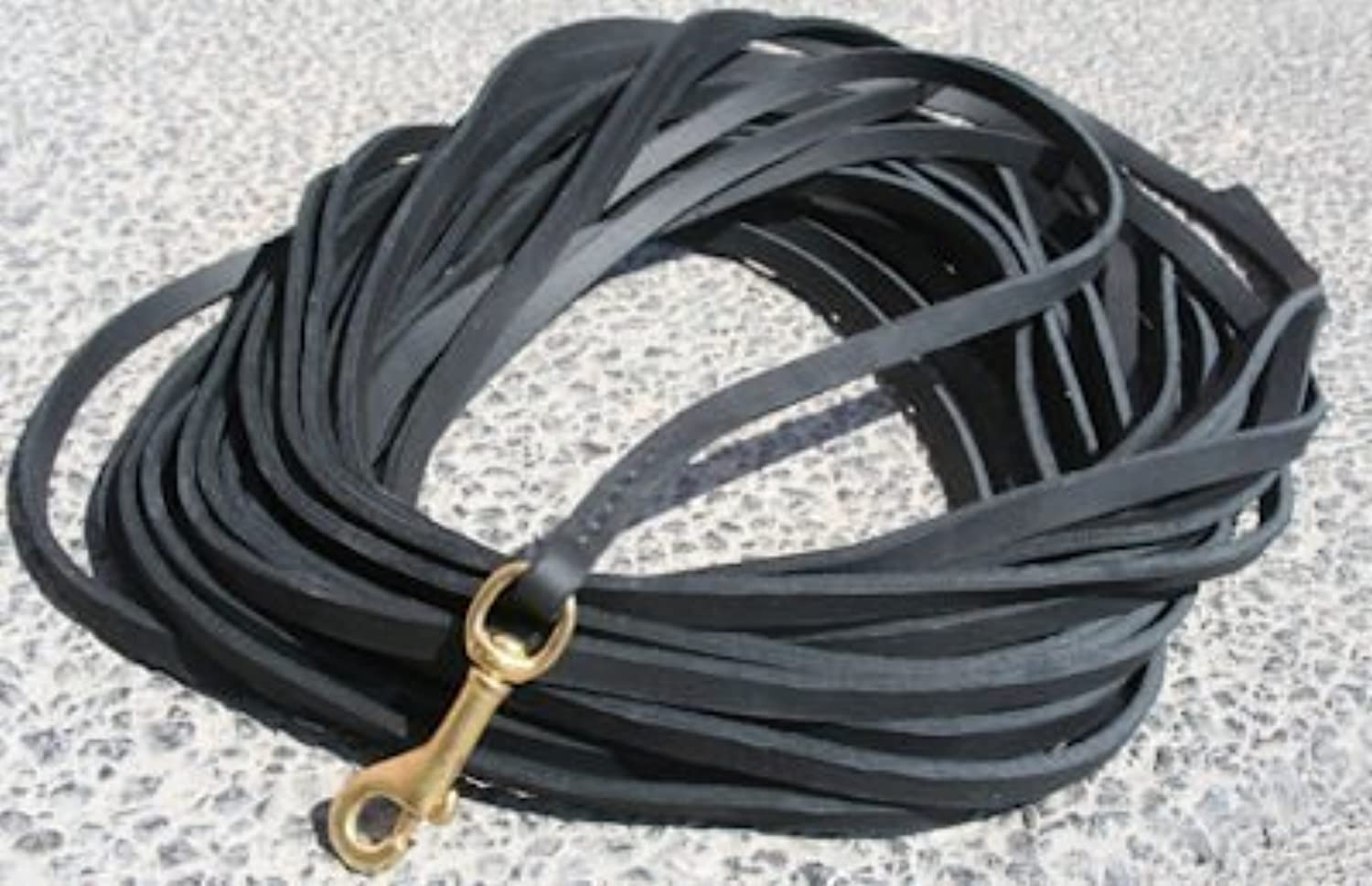 Dean and Tyler Stitched Track Dog Leash with Solid Brass Hardware, 20Feet by 3 8Inch, Black