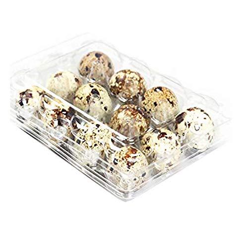 Quail Egg Lot de 50 boîtes en carton réutilisables 100 % plastique recyclable pour réfrigérateur, 12 petits œufs de caille, faisan ou grouse
