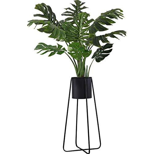 Gfbyq Eisen-Blumen-Regal Innenwohnzimmer-Balkon-Boden-Blumengestell (Farbe : Schwarz, größe : 25 * 25 * 59cm)