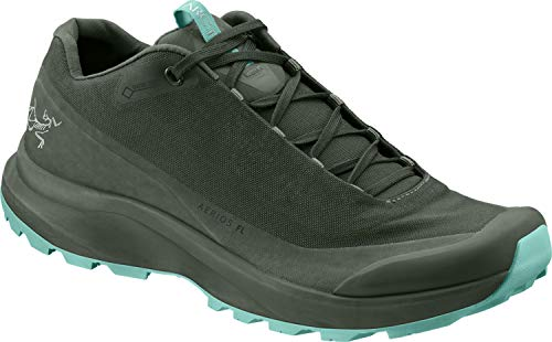 Arc'teryx Aerios FL GTX Women's (Shorepine/Illucinate, 9)
