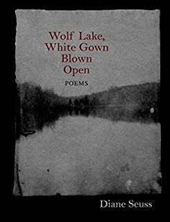 Wolf Lake, White Gown Blown Open: Poems (Juniper Prize for Poetry)