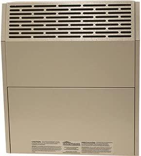 HouseWarmer Slim-Profile Direct Vent Heater with Blower - Propane, 15,000 BTU, Model# HWDV150BP