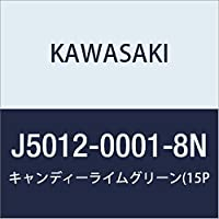 KAWASAKI (カワサキ) タッチアップペイント 【 容量:15ml 】 カラー:キャンディライムグリーン J5012-0001-8N