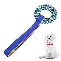 RUIMA 犬のおもちゃ歯不滅の咬傷オックスフォード布子犬おかしいのトレーニングボールは、玩具プレイロープペット犬の屋外歯クリーンおもちゃを噛ん おもちゃ (Color : Blue, Size : M)