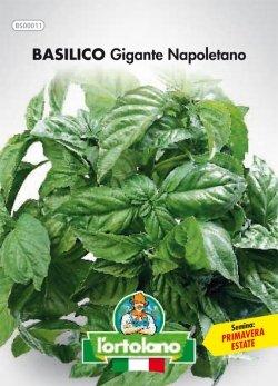 Sementi orticole di qualità l'ortolano in busta termosaldata (160 varietà) (BASILICO GIGANTE NAPOLETANO)