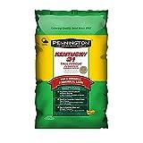 8. Pennington Kentucky 31 Tall Fescue Grass Seed, 5 LB