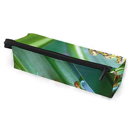 Bleistiftbeutel Fall Sonnenbrillen Harlekin Gift Dart Frog Kosmetik Studenten Schreibwaren Beutel Reißverschluss für Mädchen Jungen