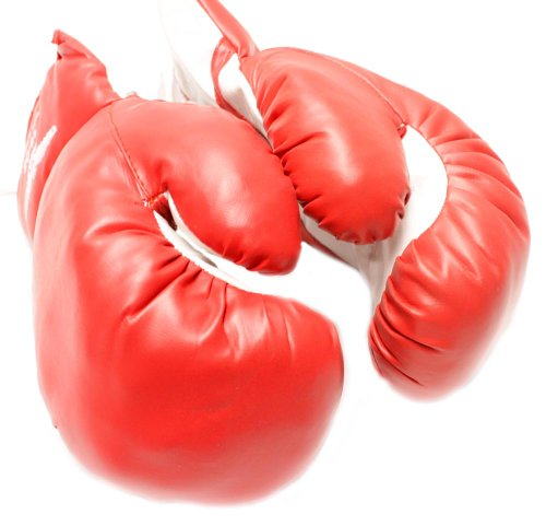 1 Pair of New Boxing/Punching Gloves and Fitness Training : Red - 16oz