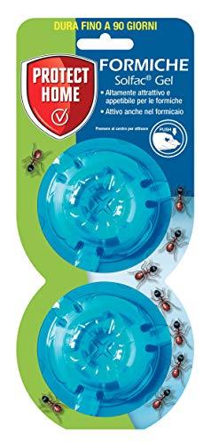 PROTECT HOME Solfac Gel Box: attrattivo ed appetibile per le formiche, 2 x 2 gr