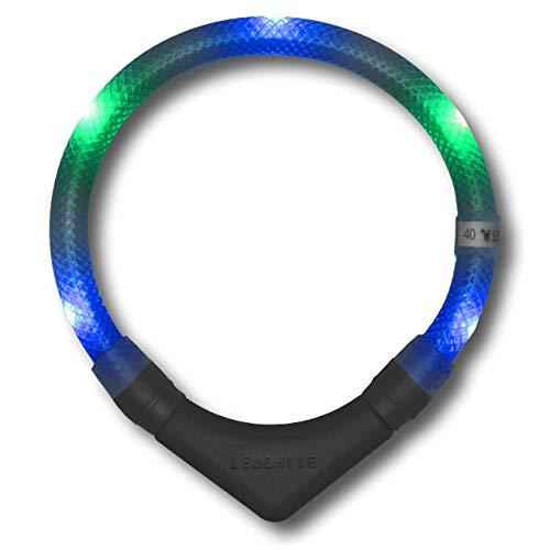 LEUCHTIE® Leuchthalsband Plus blau-grün Größe 45 I LED-Halsband für Hunde I 100 h Leuchtdauer I wasserdicht I enorm hell