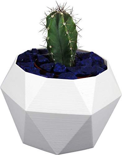 NetClient maceta decorativa moderna para flores, maceta única de plástico, maceta bonita para plantas (Hexagon L, blanco)