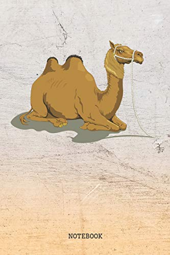 Notebook: Funny Camel Planner / Organizer / Lined Notebook (6