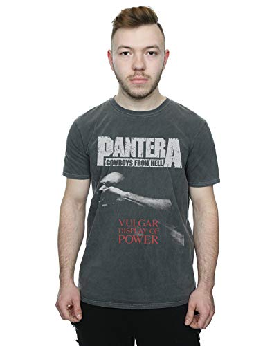 Absolute Cult Pantera Hombre Vulgar Display of Power Camiseta Lavada Carbón Medium
