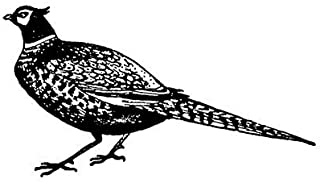 1 inch Pheasant rubber stamp - 5411