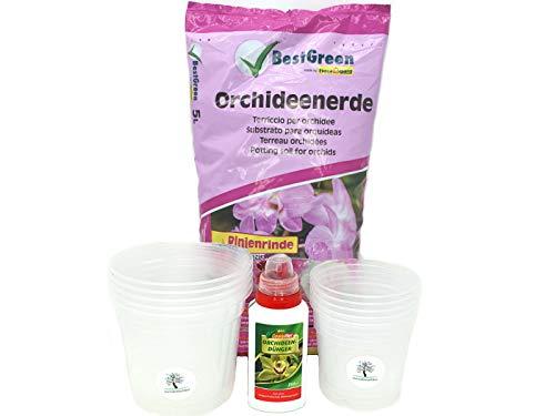 Orchideen-Set für die Zucht oder zum Umtopfen