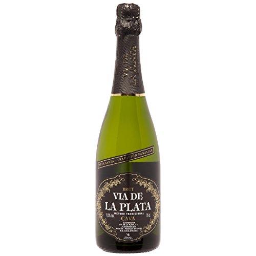 VIA DE LA PLATA cava brut botella 75 cl
