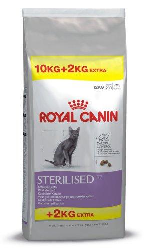 ROYAL CANIN - Feline Health Nutrition Sterilised 37 Saco De 10 + 2 Kg 🔥
