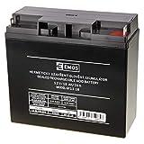 EMOS B9655 Wartungsfreier Bleiakku/Bleiakkumulator für Notbeleuchtung, Alarmsysteme, Brandmeldetechnik, Kinderfahrzeuge, USV-Geräte, 12V, 18 Ah, 12 V