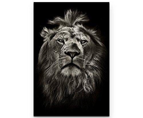 Paul Sinus Art Leinwandbilder | Bilder Leinwand 90x60cm Portrait eines Löwen