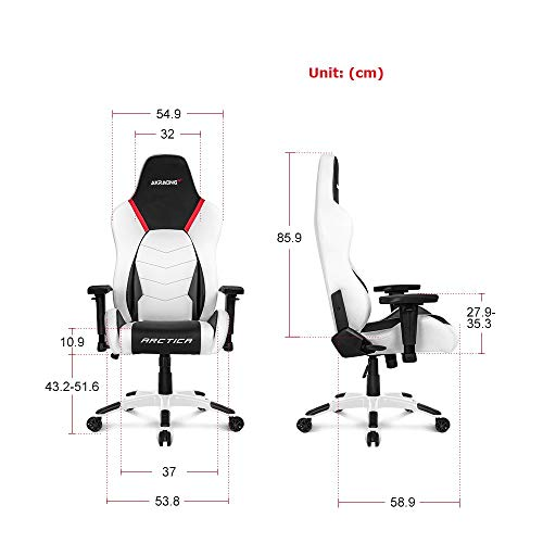 AKRacing Masters Series Premium Gaming Chair with High Backrest, Recliner, Swivel, Tilt, Rocker and Seat Height Adjustment Mechanisms with 5/10 Warranty