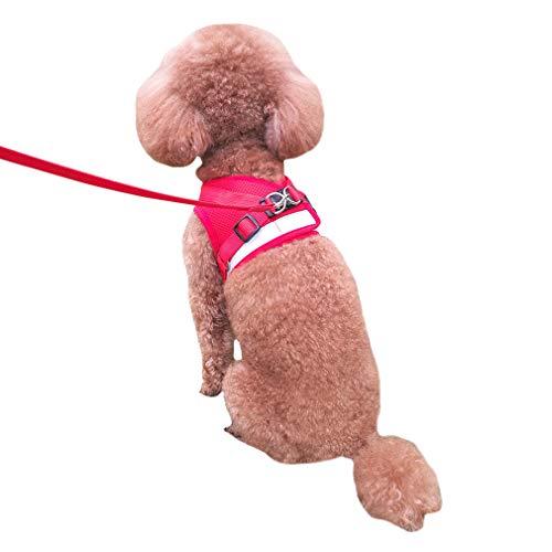 QiCheng&LYS Chaleco de Viaje Regular de Malla Transpirable con Cinturón de Seguridad para Perros y Gatos Chaleco de Seguridad para Mascotas (Rojo, M)