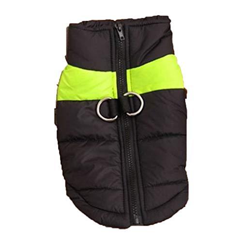 SWJ-Dog warm coat Hundemantel Warme Padded Herbst Und Winter Tragen Haustier-Kleidung Teddy Golden Hair Weste Daunenjacke H-M